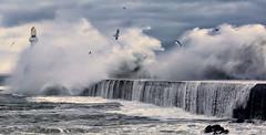 Beast at the door (PeskyMesky) Tags: aberdeen aberdeenbeach storm beastfromtheeast lighthouse waves southbreakwater landscape scotland flickr 2018