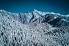 玉山主峰| Yushan peak (里卡豆) Tags: 阿里山鄉 臺灣省 台灣 tw olympus taiwan ep3 ir irfliter 紅外線 75mm olympus75mmf18