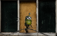 7 eyed Jake in the window (PDKImages) Tags: manchesterstreetart posterart windows pasteup manchester city urban art graffiti colours walls jake