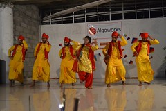 A throwback to the marvelous lohri celebrations! (Algoworks) Tags: lohricelebration lohri lohricelebrations office officeparty celebrations celebrationstime bhangra bhangracompetition folkdance dancepics