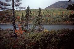 New England Lake in Autumn - Kodachrome (2) (Ron of the Desert) Tags: film slidefilm positivefilm reversalfilm kodak kodachrome newengland autumn trees lake