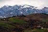 Fall ...in winter V (luca_pictures) Tags: marche italy inverno neve freddo colline montagne sibillini mattino outdoor paesaggio