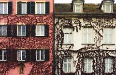 Bamberg Häuserfront 1 (SimonSch) Tags: streetphotography franken deutschland bamberg fashion farbreich bayern symmetrie colorful symetrical architektur farben häuser streetart frankonia houses bavaria architecture
