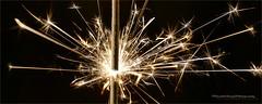 Fireworks (Harald Steeg) Tags: feuerwerk wunderkerze sterne funken makro firework sparkler star sparks macro
