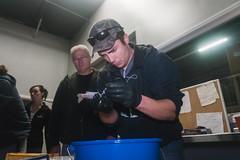 Teacher and Student (FISH-BIO) Tags: training fisheriestraining taggingfish fish tag floytag disk tagpeterson tagfish cradlepit tagpit