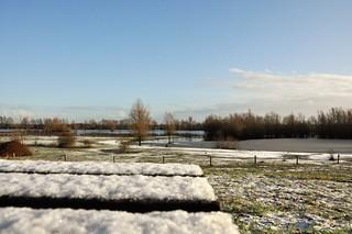 Beetje wit / Little bit white...12-2-18