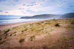 Volverán los pájaros cantando... (galavardo) Tags: sony a7ii 28mmf2 playadexagó gozón asturias españa spain playa beach atardecer sunset mirrorless