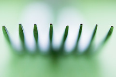 Two Forks 4 (pni) Tags: fork utensil macro closeup cinc color colour green helsinki helsingfors finland suomi pekkanikrus skrubu pni