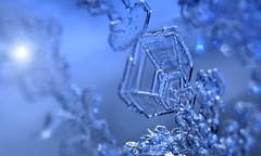 Winter glitz (Dr-Chomp) Tags: winterglitz winter bluelight freeze canada publicdomain