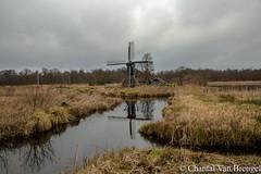 Mollen de spinnen kop Ossenzijl (Chantal van Breugel) Tags: landschap molen spinnenkop reflecties weerribben ossenzijl februari 2018 canon5dmark111 canon24105