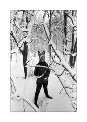 The Fox (Andrei Sorokin) Tags: nikon kentmere microphen analog film portrait bw snow