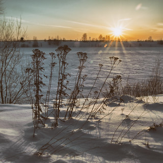 Sunset / The Kostroma river (Explored)