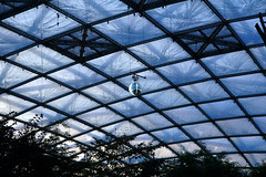 Gondwanaland (ingrid eulenfan) Tags: leipzig zoo gondwanaland tropenleuchten licht