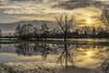 Main River near Hanau (Helmut Wendeler aus Hanau) Tags: flus main hochwasser sonnenuntergang sumpflandschaft