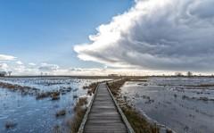 The clouds are coming (Martijn van Sabben) Tags: weather awesome d500 iamnikon nikon landschap pure mooi defotoblogger dwingelderveld drenthe natuurmonumenten holland dutch netherlands nederland sky cloudporn cloud landscape nature ngc