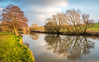 River Medway (Martin Norden) Tags: 24120mm d750 nikon river rivermedway teston water afternoon lowsun reflections riverbank trees walk breath taking landscapes abigfave