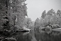 Duke Snow Day 3 (akintsy_photo) Tags: duke university snow south landscape winter garden park