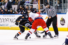 "Kansas City Mavericks vs. Allen Americans, February 24, 2018, Silverstein Eye Centers Arena, Independence, Missouri.  Photo: © John Howe / Howe Creative Photography, all rights reserved 2018 • <a style=""font-size:0.8em;"" href=""http://www.flickr.com/photos/134016632@N02/39790823064/"" target=""_blank"">View on Flickr</a>"