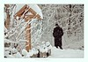 the lonely hiker ... (friedrichfrank1966) Tags: winter winterlandschaft man hiker snowfall wald rahmen black white schnee snow nature wanderer nikon 70300 tele zoom