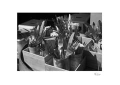 Steel Bouquets (radspix) Tags: nikon fe 3570mm zoomnikkor f3345s macro arista edu ultra pmk pyro