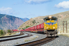 SD70ACe Face (Delff DUMONT von WALTHER.u.CRONECK) Tags: union pacific sd70ace usa railroad