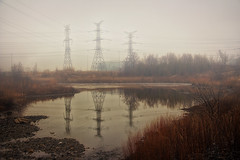 Foggy Reflections (A Great Capture) Tags: latewinter winter landscape water pond reflection powerlines agreatcapture agc wwwagreatcapturecom adjm ash2276 ashleylduffus ald mobilejay jamesmitchell toronto on ontario canada canadian photographer northamerica torontoexplore l'hiver 2018 overcast urbannature