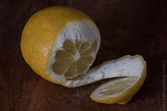 The Bitterness of Gluttony 2 HMM! (kayakingjanet) Tags: foodanddrink lemons vanitas stilllife macromondays macro citrus
