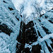 Sandstone - Robinson Quarry Ice Park, Minnesota in Winter