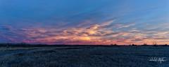 Sunset Clouds (dcstep) Tags: cherrycreekstatepark colorado greenwoodvillage usa sonya7riii canonef500mmf4lisii ef14xtciii handheld allrightsreserved copyright2018davidcstephens dxophotolab dsc6026dxo clouds sunset lenticular pink red blue pixelpeeper
