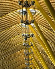 T4 (Gallo Quirico) Tags: arquitectura aeropuerto adolfosuarez t4 richardrogers lamela cubierta amarillo yellow architecture structure steel olympus e5 zuko 50200mm