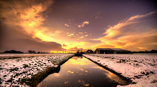 Reflection of Holland.