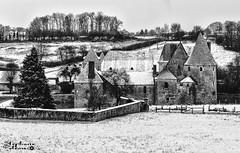 Château de Burenlure. Boulleret (touflou) Tags: noiretblanc blackandwhite bw sancerre cher vigne neige froid