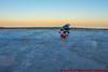 Skifahrer Schlumpf im Slalom um die Ostseemuscheln (Stefan's Gartenbahn) Tags: schlumpf schlumpfine snowboard ski slalom snowboarden danboard danbo eis eiskristall muschel toy schleich binz rügen