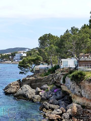 Mallorca '15 - Santa Ponca - 10.Jpg (Stappi70) Tags: flora mallorca santaponca spanien urlaub