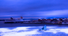 Well Captain, am I going aboard or not (evakongshavn) Tags: ship cruiseship waterscape sealine seashore seascape water fjord oslo norge norway opera blue bluetiful bluehour wordsofwisdom blahblahscape blahblah sky skyline skyandsunset skyscape clouds building houses winter snow snowfall