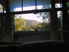 DSC00075 (classroomcamera) Tags: home window view landscape trees light sunlight hills mountain sky clear day tree hill mountains living room open afternoon
