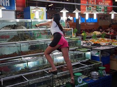 phu quoc. (vornoff) Tags: vietnam phuquoc nightmarket prime