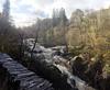 river braan at rumbling bridge (stusmith_uk) Tags: scotland perthshire october 2017 riverbraan glenbraan rumblingbridge autumn dunkeld