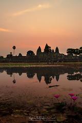 Sunrise in Angkor Wat (猫之瑪姫) Tags: sunrise sunlight nikon landscape cambodia asia temple mekong siemreap 柬埔寨 暹粒 吳哥窟 angkorwat travel