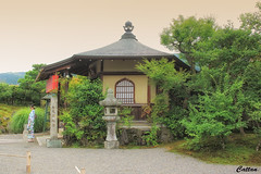 Tenryu-Ji Zen Temple - Kyoto (cattan2011) Tags: 京东 日本 japan kyoto ancient temples building architecturephotography traveltuesday travelphotography travelbloggers travel naturelovers natureperfection naturephotography nature landscapephotography landscape tenryujizentemple