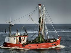 CUX 13 (jenswagner) Tags: fischkutter schiffe nordsee niedersachsen deutschland cuxhaven wasser meer