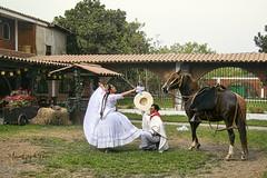 Fin de fiesta - 1468 (Marcos GP) Tags: marcosgp lima peru baile dance chalan caballodepaso tradicion
