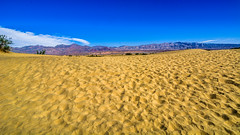 Death Valley National Park California . Mesquite Flat Sand Dunes (Feridun F. Alkaya) Tags: deathvalleynationalpark nps ngc coyote usa nationalpark zabriskiepoint sanddunes jackal desert dvnp deathvalley california mesquiteflatdunes dunes saltflats salt
