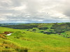 Welsh rural beauty (Digidoc2 - OFF for a little while!) Tags: ruralscene fields landscape hills countryside meadows scenery scenic mountainrange valley rollinglandscape pasture windturbines forests sky clouds sheep green grass wales birds
