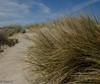 Puerto Madryn (nebulous 1) Tags: puertonmadryn argentina patagonia beach sand nikon nebulous1 glene