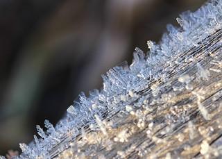 017/365 Ice Crystals.