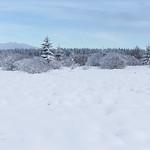Winter landscape (on Explore). thumbnail