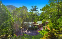 162 Blindmouth Road, Main Arm NSW