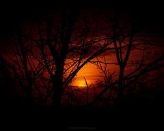 Goodmorning! #MrOfColorsPhotography #InspireMediaGroningen (mrofcolorsphotography) Tags: colorful colour colourful colours photographer photography photooftheday photo photos city cityphotography mrofcolors mrofcolorsphotography journeyofcolors journey sunlight sun sunny sunshine sunset sunrise tree trees light day daylight daytime portfoliofocolors inspiremedia inspiremediagroningen instagram flickr 500px thenetherlands holland sigmaphotography canonnederland canon canonphotography canon80d groningen clouds cloud cloudy cloudporn sky skyporn