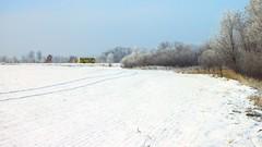 P1263716-3 (Bohdan Tymo) Tags: bus yellow